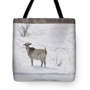 Goats In Snow Tote Bag