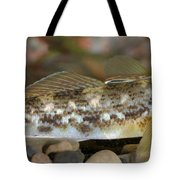 Goby Fish Tote Bag