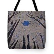 Goddess Forest Tote Bag