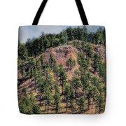 God's Beauty Tote Bag