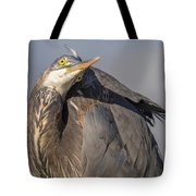 Goggle-eyes Tote Bag