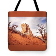 Going Down The Slope At Kodachrome Basin State Park. Tote Bag
