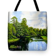 Going Down The St John's River Tote Bag
