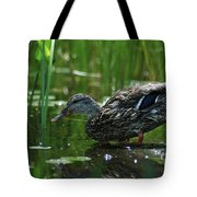 Going For A Swim Tote Bag