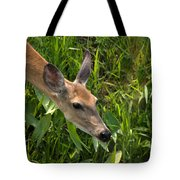 Going For The Leaf Tote Bag