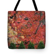 Going Jagged Green Tote Bag