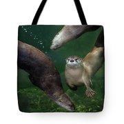 Going Their Own Way Tote Bag