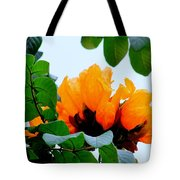 Gold African Tulips Tote Bag