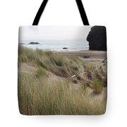 Gold Beach Oregon Beach Grass 24 Tote Bag