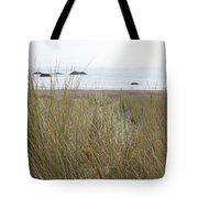 Gold Beach Oregon Beach Grass 7 Tote Bag