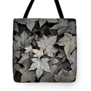 Gold Copper And Silver Leaves 1 Tote Bag by Roger Snyder