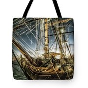 Gold Digger Tote Bag