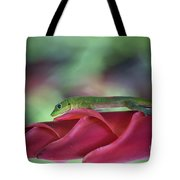 Gold Dust Day Gecko 1 Tote Bag