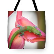 Gold Dust Day Gecko 2 Tote Bag