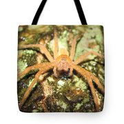 Gold Hunting Spider Tote Bag