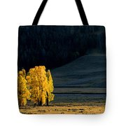 Gold In The Lamar Valley Tote Bag
