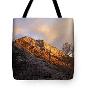 Gold In Them Thar Hills Tote Bag
