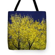 Gold On Blue Tote Bag