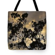 Gold Sunset Tree Silhouette I Tote Bag