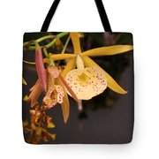Gold Yellow Orchid  Tote Bag