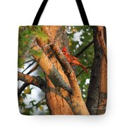 Golden Afternoon Glow II Tote Bag