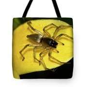 Golden Arachnid  Tote Bag