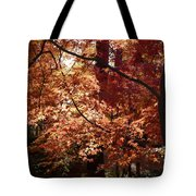Golden Autumn Sunshine Tote Bag