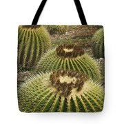 Golden Barrel Tote Bag