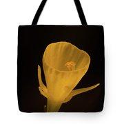 Golden Bells Carpet Daffodil With Black Background Tote Bag