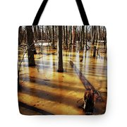 Golden Brown Frozen Pond Tote Bag