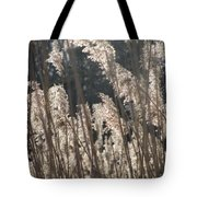 Golden Brown Tote Bag