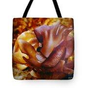 Golden Brown Wild Mushroom Tote Bag