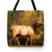 Golden Bull Elk Portrait Tote Bag