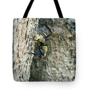 Golden Carpenter Ant  Tote Bag