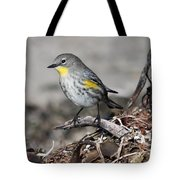 Golden Cheeked Warbler Tote Bag
