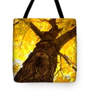 Golden Climb Tote Bag