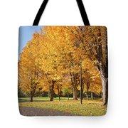 Golden Colors In Autumn Bellavista Park Oregon. Tote Bag