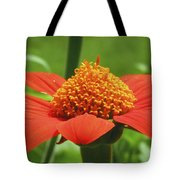 Golden Crown On Red Tote Bag