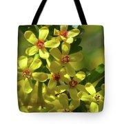 Golden Currant Blossoms Tote Bag