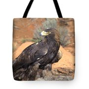 Golden Eagle On Rabbit Tote Bag