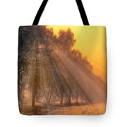 Golden Early Morning Sun Rays On The Farm Chesterhurst L B Tote Bag