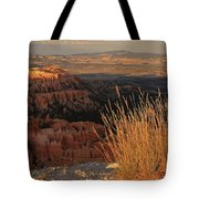 Golden Evening Light Bryce Canyon 1 Tote Bag