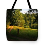 Golden Evening Light Tote Bag