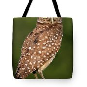 Golden Eyes Tote Bag