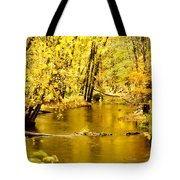 Golden Fall  Tote Bag