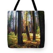 Golden Forest Bed Tote Bag