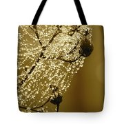 Golden Globes Tote Bag