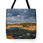 Golden Glory Tote Bag