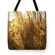 Golden Grass In Sunset Tote Bag