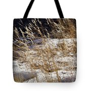 Golden Grasses In Sun And Snow Tote Bag